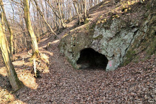 Gagernhöhle im Wald